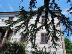 Vendita Villa Trifamiliare – 9 Locali