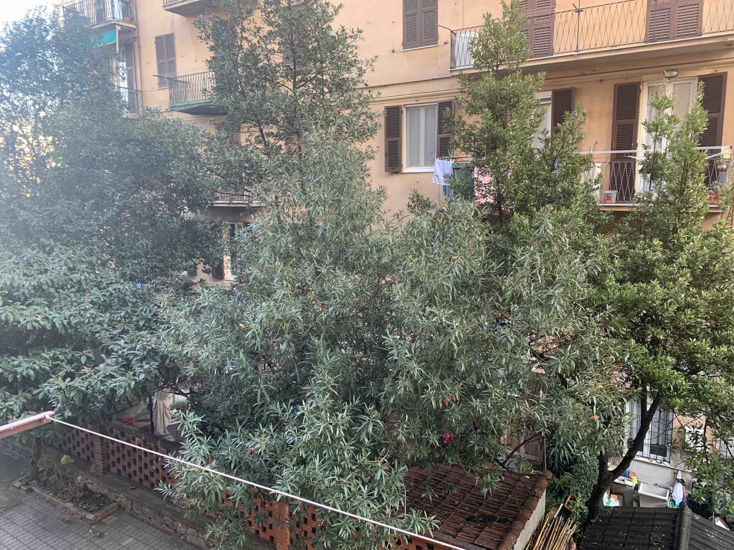 Genova – Foce